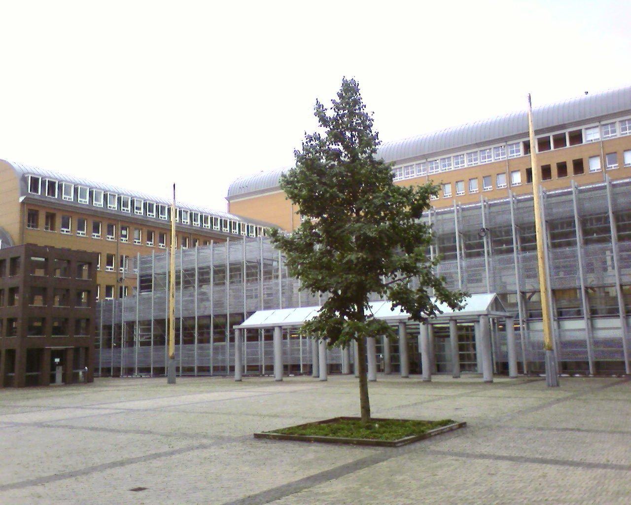 Gerechtshof 's-Hertogenbosch - Weening Strafrechtadvocaten