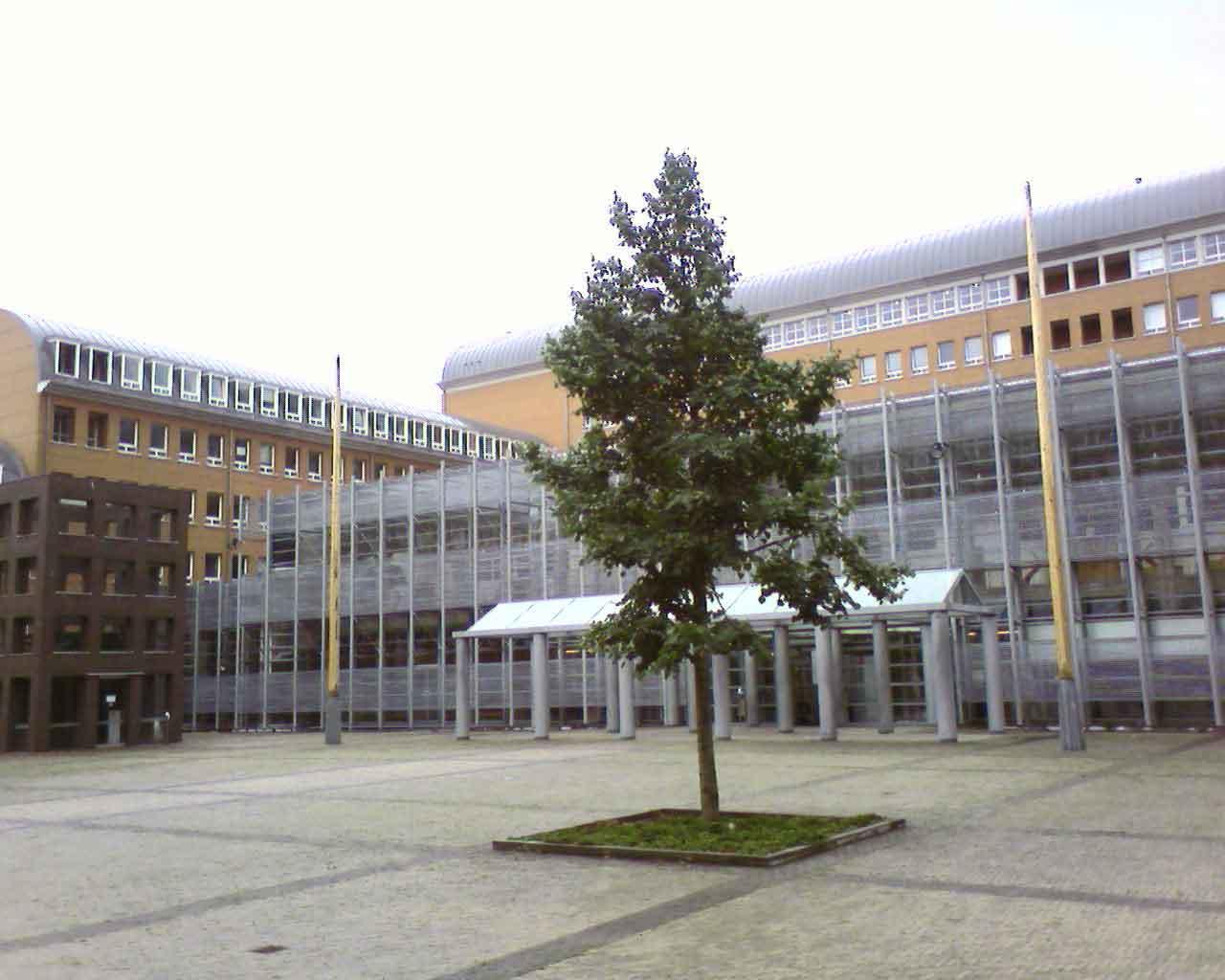 Rechtbank Oost-Brabant - Weening Strafrechtadvocaten